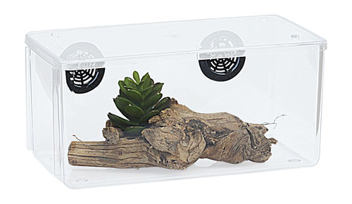 Twin Vented Insect Cage Black Vent