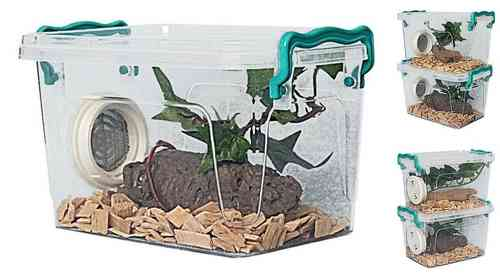 Stackable Mini Insect Enclosures