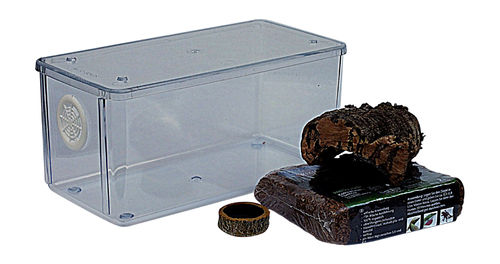 Mini Terrestrial Vivarium Set