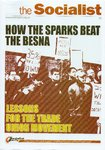 How the Sparks Beat the BESNA - Lessons for the Trade Union Movement