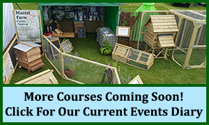 More Courses