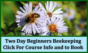Beginning Your Beekeeping Weekend Course