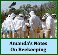 Amanda's Beekeeping Notes