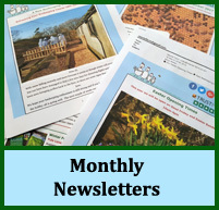 Mantel Farm Monthly Newsletters