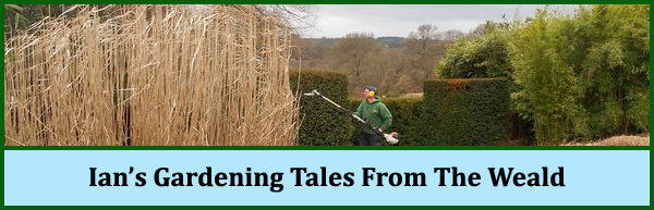 Ian's Gardening Tales From The Weald
