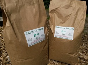 Chick Crumb and Growers Pellets