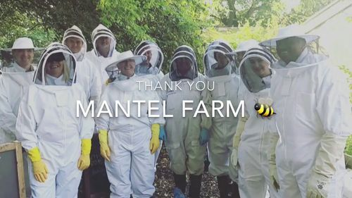 early bird beekeeping courses