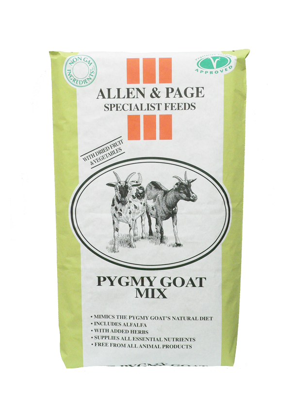 smallholder feeds pygmy goat mix
