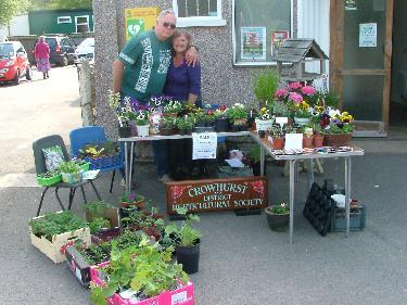 crowhurst horticultural society