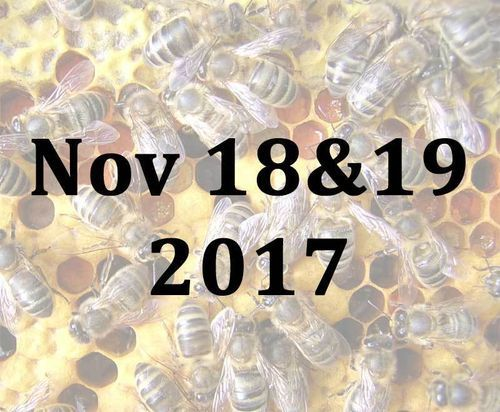 Beginning your Beekeeping Weekend with Jill and Mike - 18th and 19th November 2017
