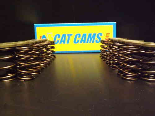 Cat Cams Double Springs + Cat Retainers
